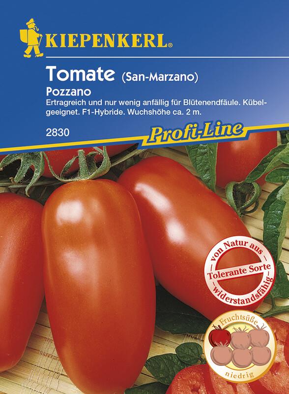 tomate pozzano san marzano tolerant 3 99 samenshop24. Black Bedroom Furniture Sets. Home Design Ideas