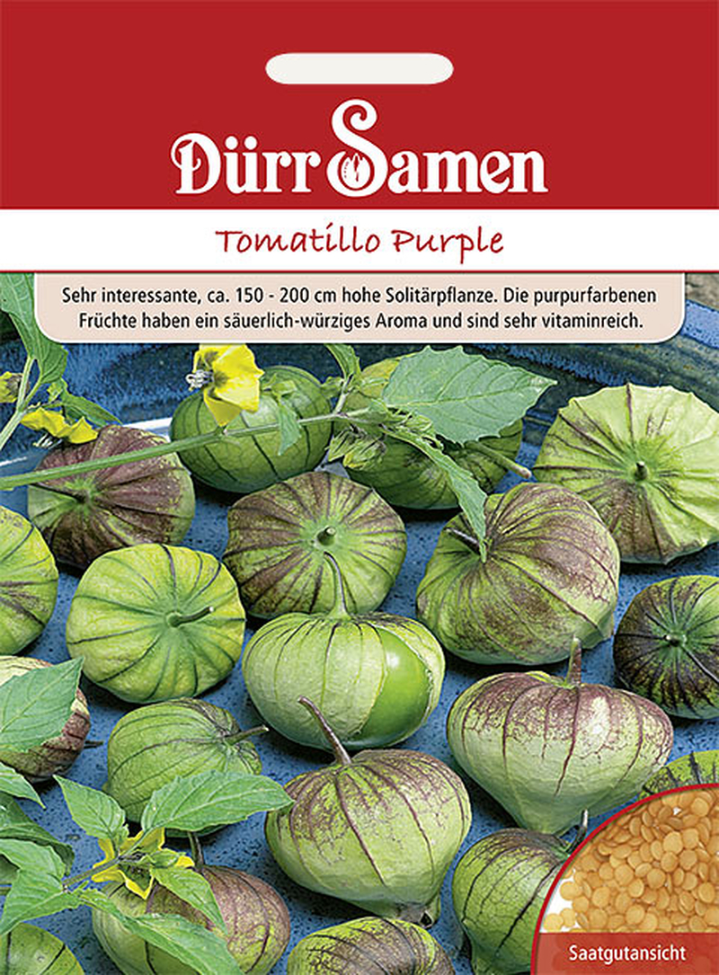 obst tomate tomatillo purple samenshop24 saatgutversand seit 1928. Black Bedroom Furniture Sets. Home Design Ideas