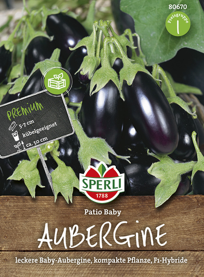 Aubergine Patio Baby