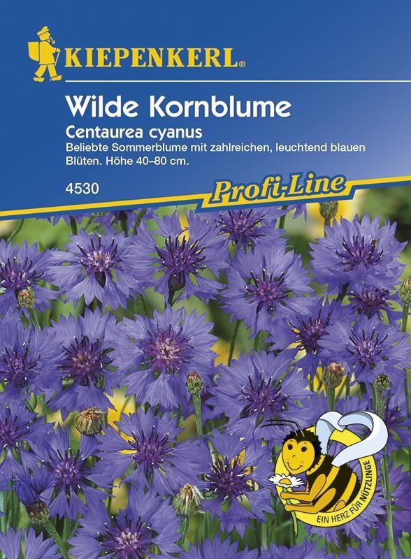 centaurea cyanus kornblume himmelblau samenshop24 saatgutversand. Black Bedroom Furniture Sets. Home Design Ideas