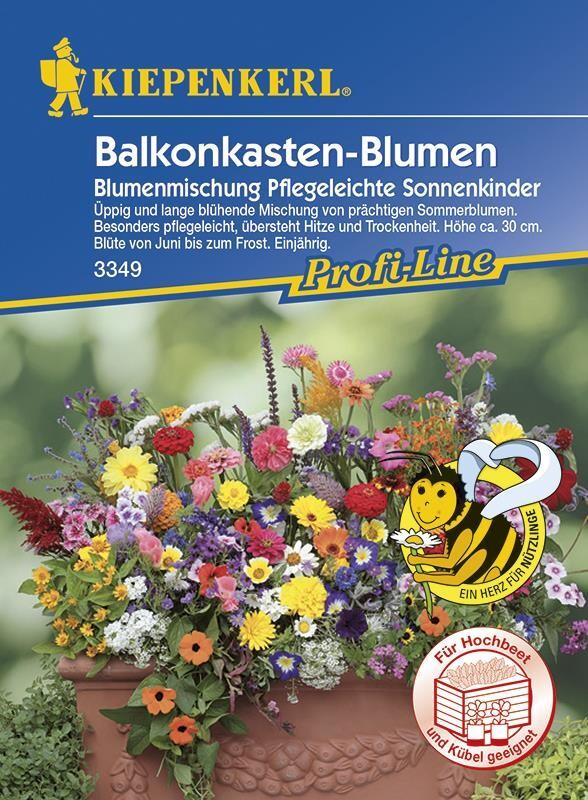 1KG Blumenwiese Mischung Saat für duftende Blumen lockt Bienen /& Schmetterlinge