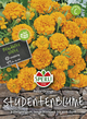 Tagetes Studentenblume Petite Orange