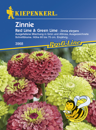 Zinien Zinnie elegans Red Lime & Green Lime
